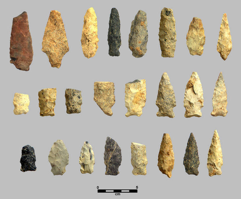 Projectile points from the Love House site, dating from 500 B.C. to 500 A.D.