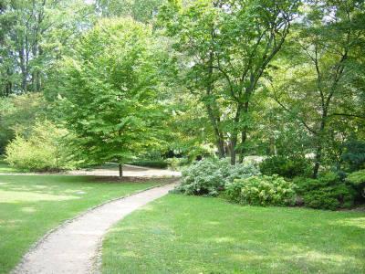 Coker Arboretum, established 1903