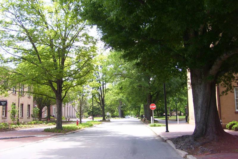 Cameron Avenue, dedicated 1885